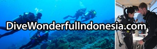 Dive Wonderful Indonesia
