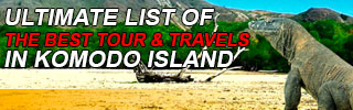 List of Komodo Tour & Travel