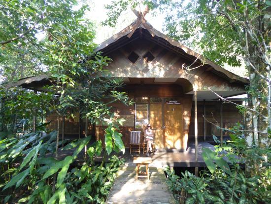 Rimba Orangutan Eco Lodge Kalimantan